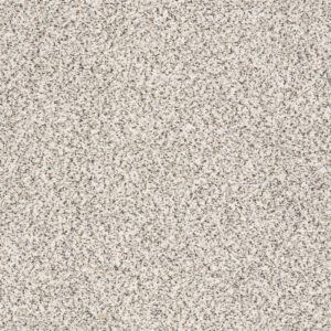 Shaw Find your comfort I - Accent Carpet